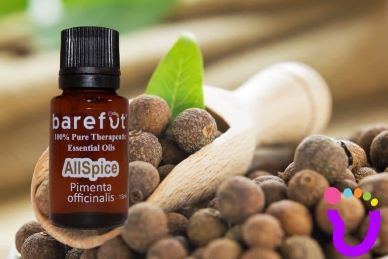Allspice pure essential oil