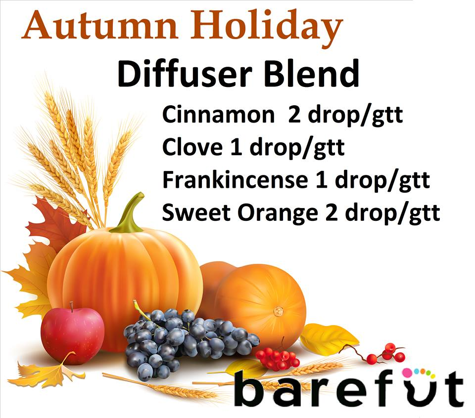Autumn Holiday Diffuser Blend