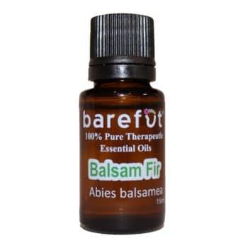 Balsam Fir Essential Oil