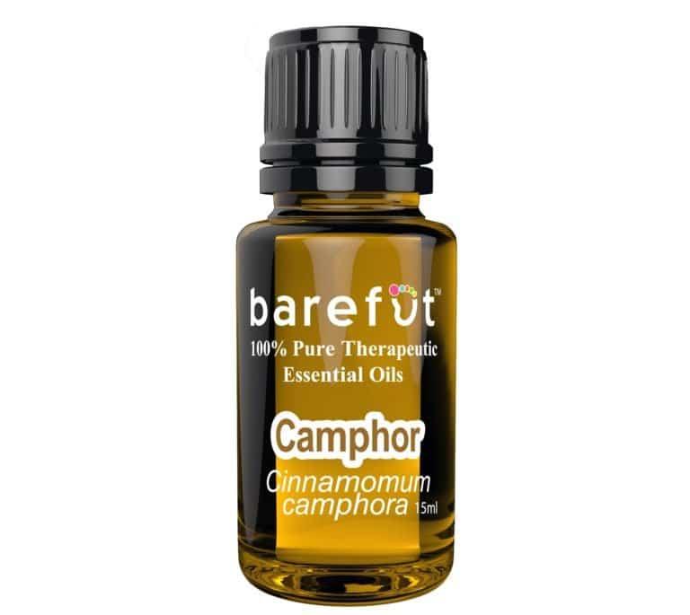 Camphor Essential Oil