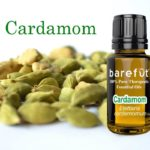 Cardamom Essential Oil Benefits and Uses