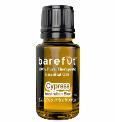 Cypress Australian Blue Essential Oil
