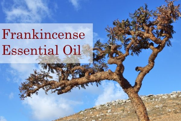 Frankincense Essential Oil Blog Post