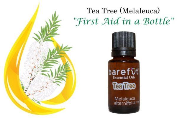 Melaleuca Tea Tree Essential Oil