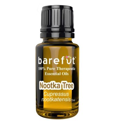 Nootka Tree Essential Oil