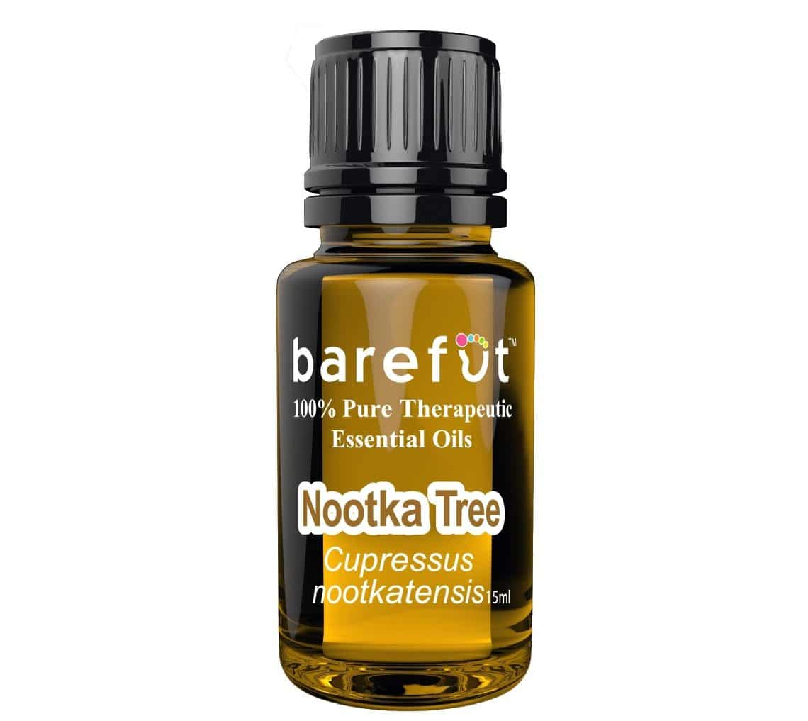 Nootka Tree Essential Oil