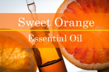 Sweet Orange Essential Oil Benefits and Recipes