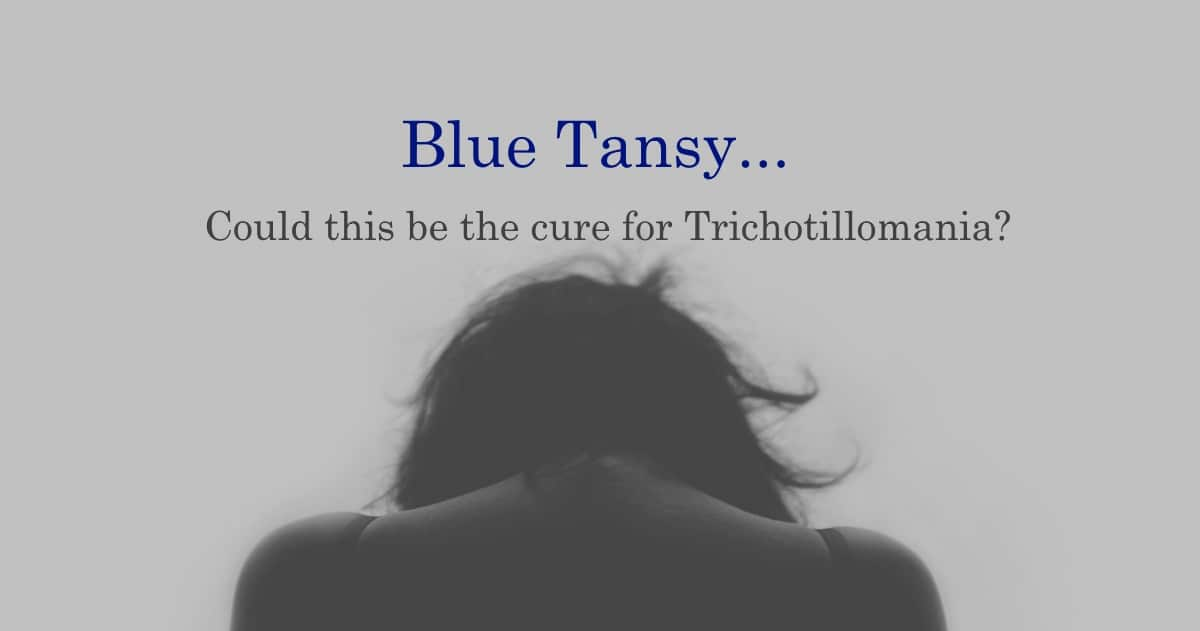 Trichotillomania Treatment with Blue Tansy Essential Oil by Barefut
