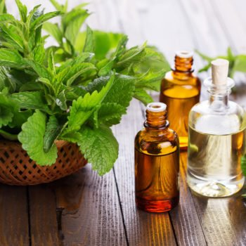 barefut Peppermint Essential Oil